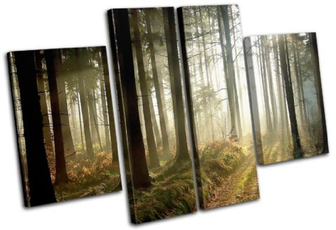 Woodland Forest Landscapes - 13-0767(00B)-MP17-LO